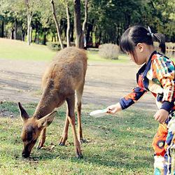 伴我成长的小鹿 kidsfoto枫糖盒子-拍娃党公众号