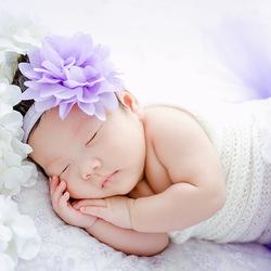 紫色梦乡 kidsfoto枫糖盒子-拍娃党公众号